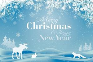 christmas-997897 1920